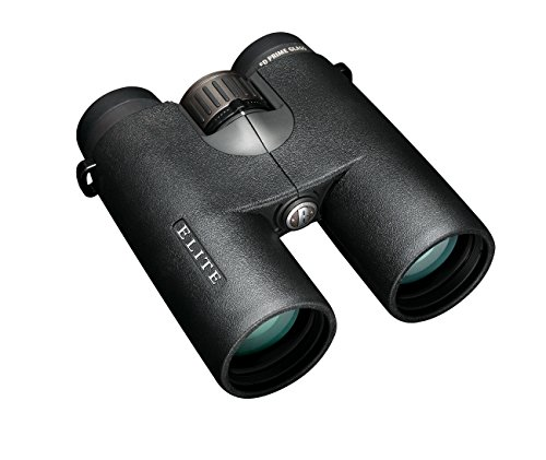 Bushnell Elite 10x42 color negro