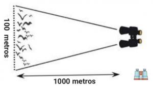 campo-vision en prismaticos