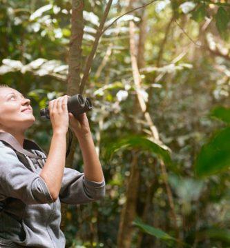 prismaticos para ver aves