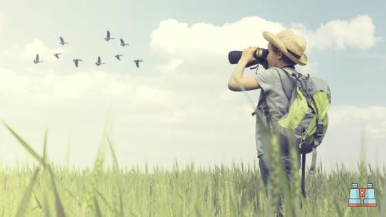 niño con prismaticos para ver aves