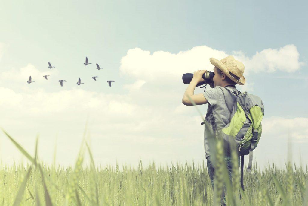 niño con prismaticos viendo aves