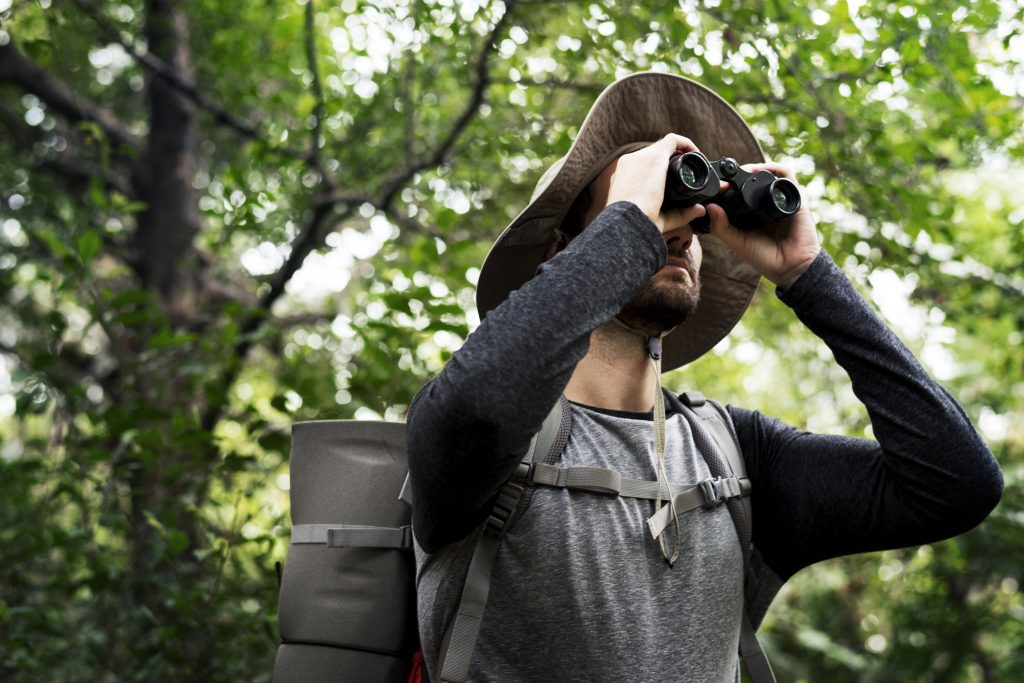 hombre observando aves